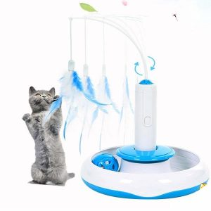 British kitten is playing with Adrance electronic feather teaser.