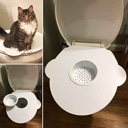 Kitty's Loo Cat Toilet Training Kit Review