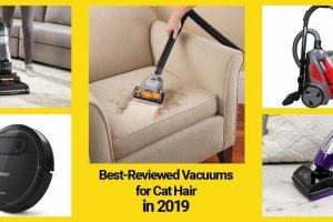 best vacuums for cat hair 2019