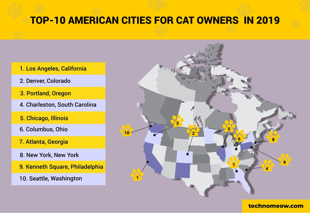 top 10 cat cities infographic
