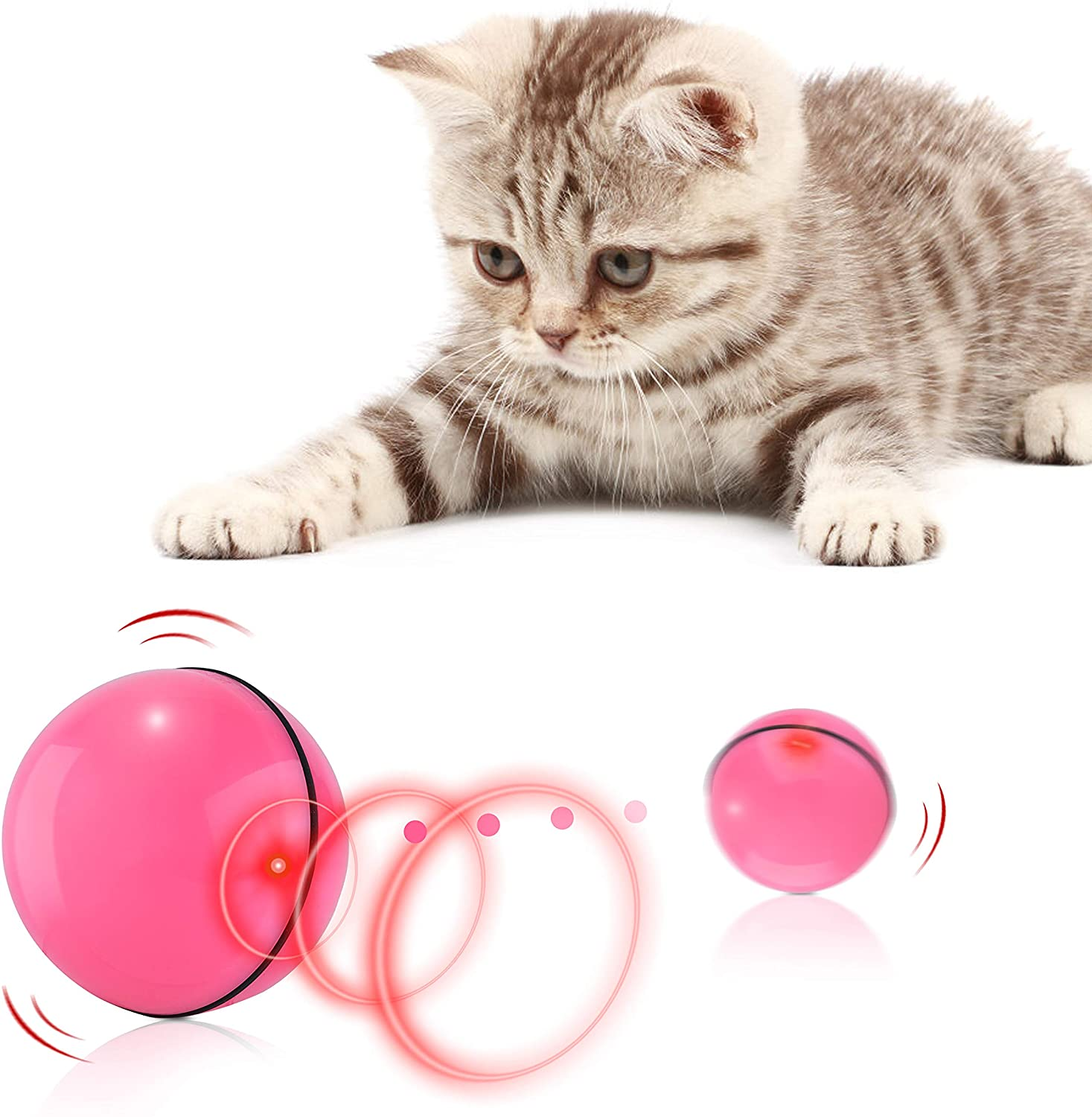 Cat is plating with motion activated interactive cat ball