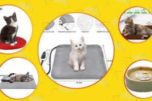 different electric blankets for cats