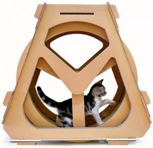 Ferris cat wheel for kittens.