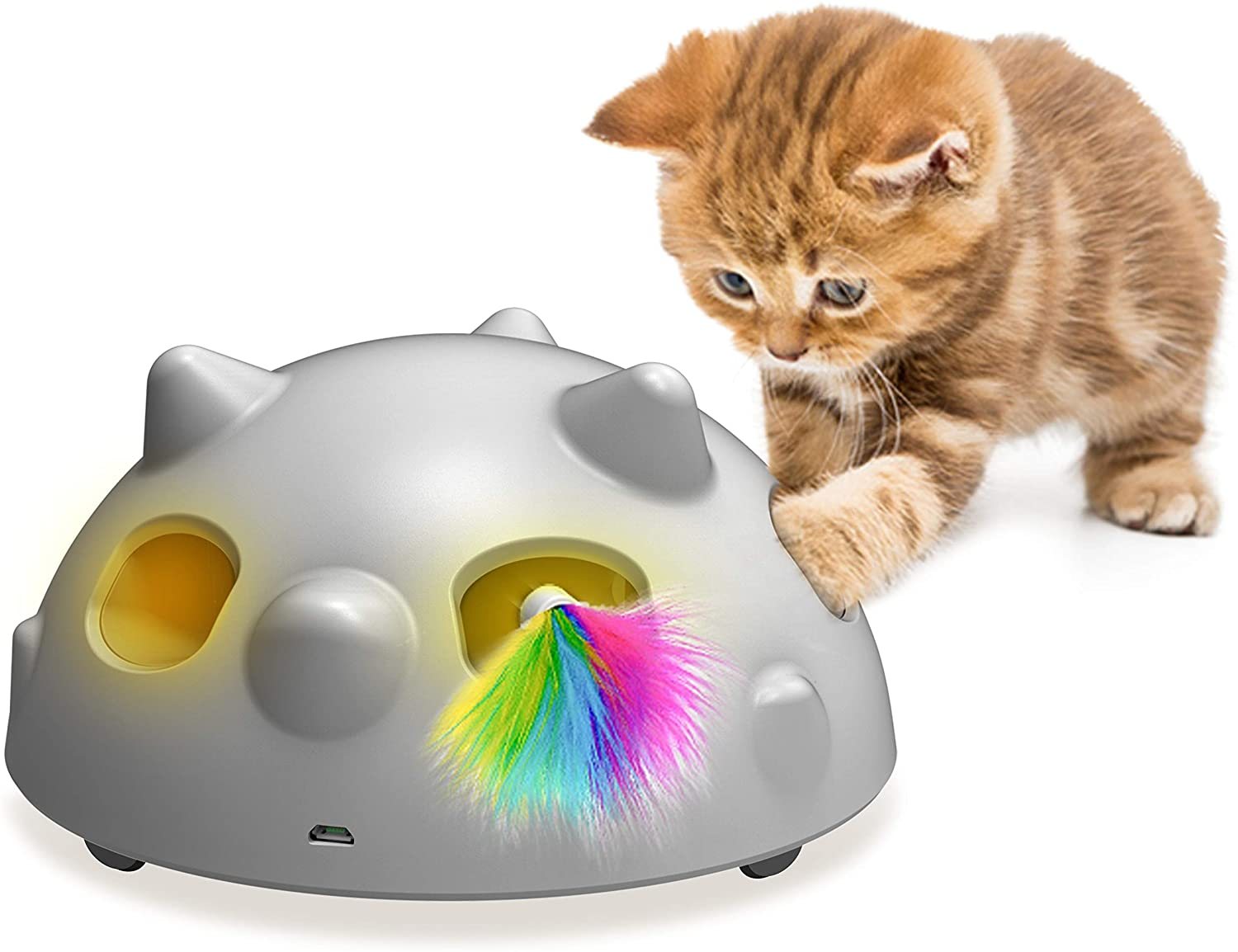 Small kitty is playing with DOMGOOPET electronic toy