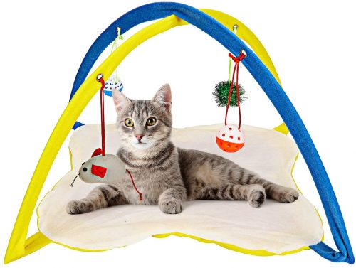 Cat is playing with hanging toys on Animals Favorite Cat Tent Activity Center.