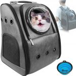 Cat inside the Petrip leather backpack with bubble window.
