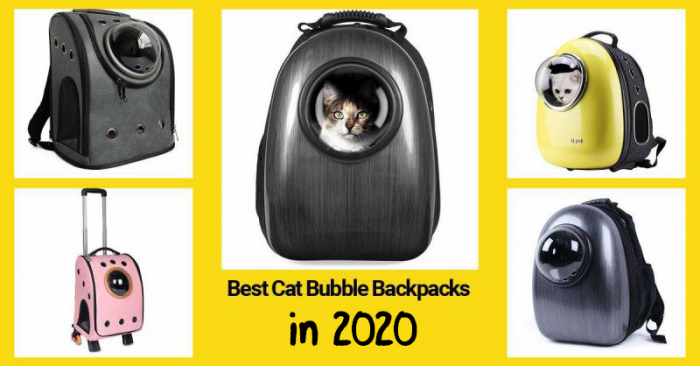 Several best cat backpacks from the list