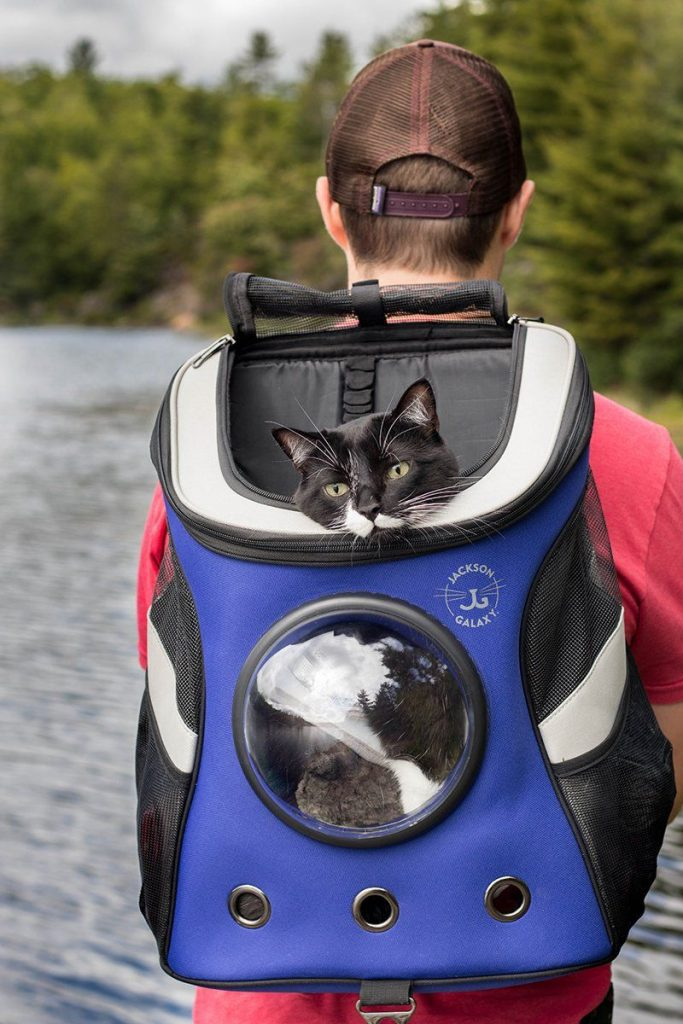 Wearing Jackson Galaxy cat backpack with bubble window