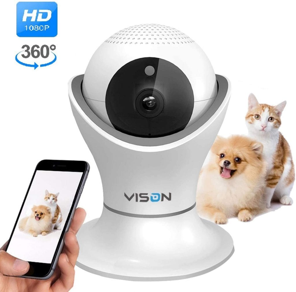 Cat and dog having their picture taken using Vison Indoor Camera for Cats