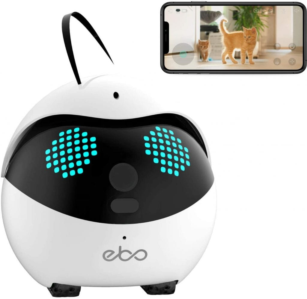 Ebo cat robot device and its app