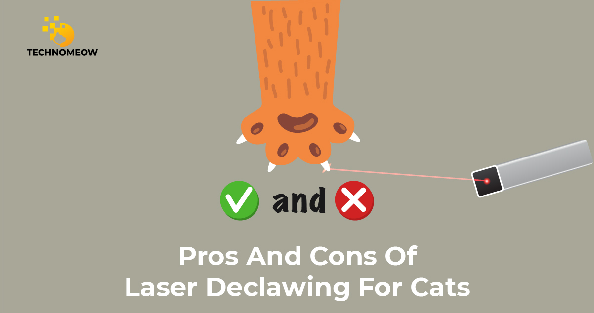Pros and cons of laser declawing