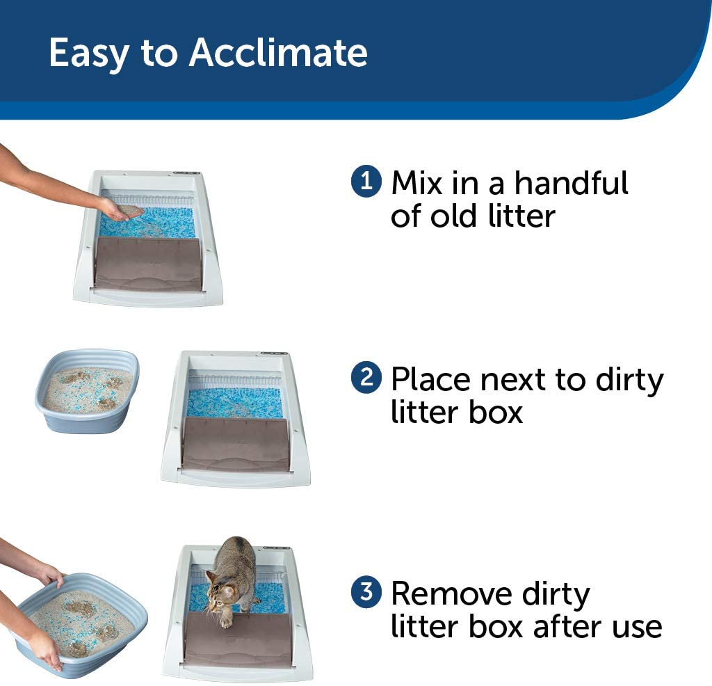 How Petsafe Scoop Free litter is cleaning itself