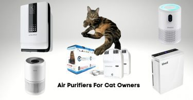 Air purifiers for cat owners