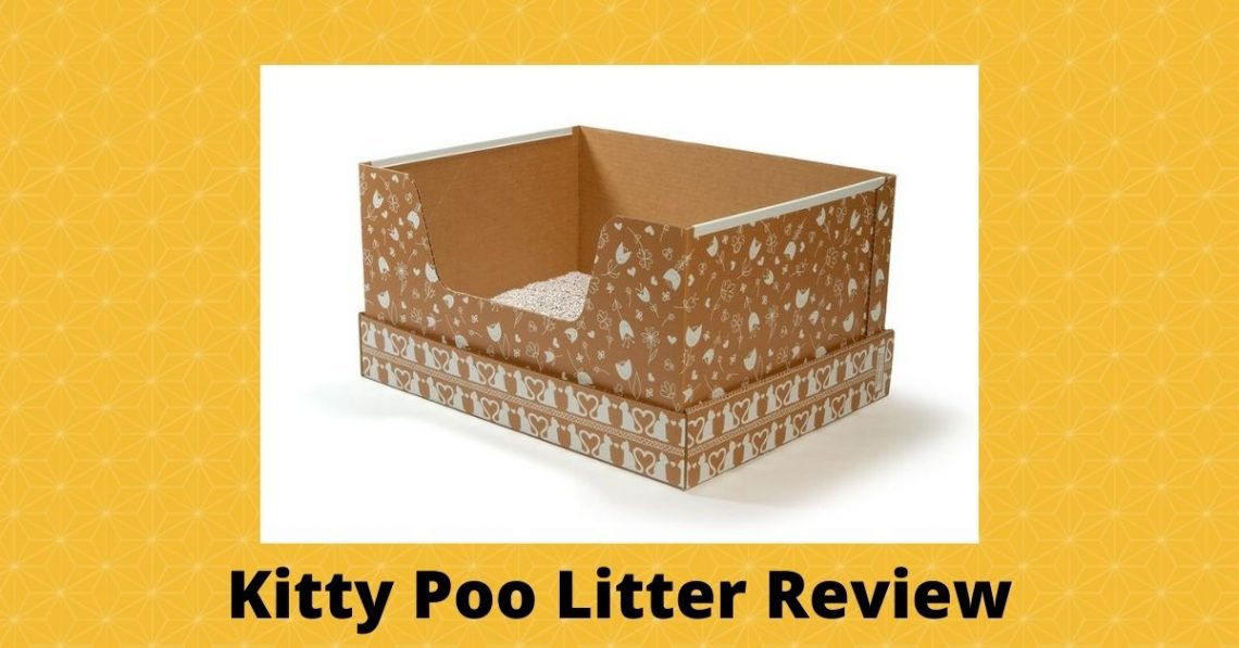 Kitty Poo Litter Review featured image