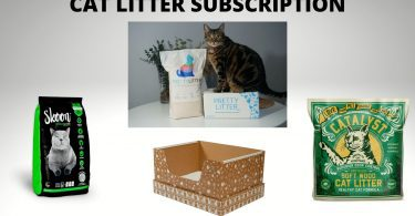 Some of the products provide cat litter subscription service