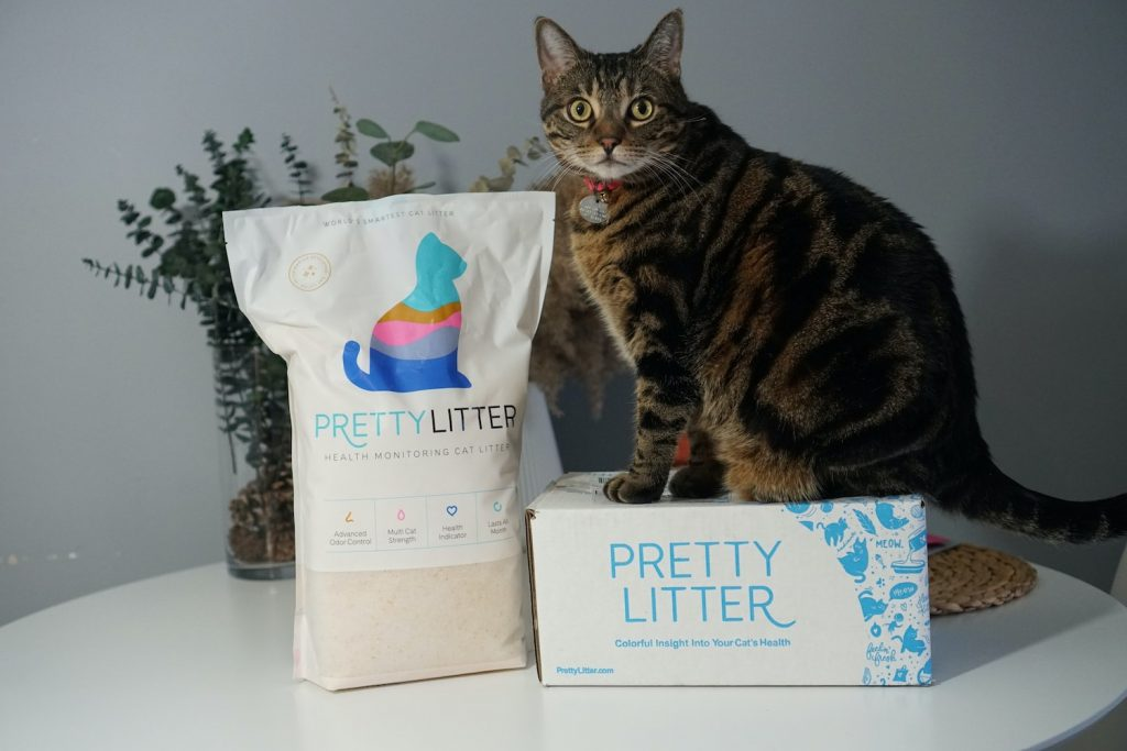 Pretty Litter package with my cat on it